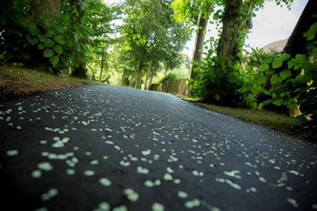 Ghent asphalt in daylight